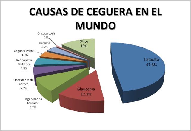 Gráfico circular, dividido en quesitos que indicas los porcentajes de las causas de ceguera en el mundo