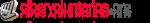 Logo Fundación Cibervoluntarios